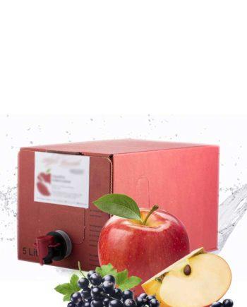 Seemost-Kellerei-Apfel-Johannisbeere-kaufen-2